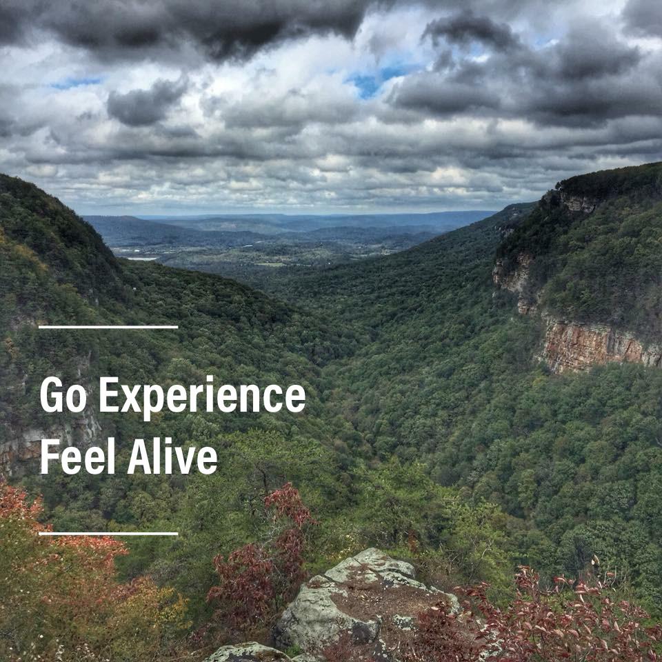 goexperiencefeelalive.com